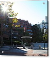 San Francisco Coit Tower At Levis Plaza 5d26189 Acrylic Print by Wingsdomain Art and Photography