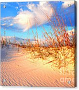Sand Dune And Sea Oats At Sunset Acrylic Print by Thomas R Fletcher