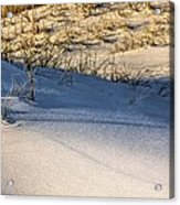 Sand Dunes Of Navarre Acrylic Print by JC Findley