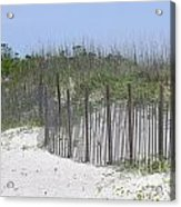 Sand Fence At Cape Lookout Acrylic Print by Cathy Lindsey