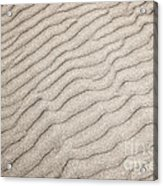 Sand Ripples Natural Abstract Acrylic Print by Elena Elisseeva