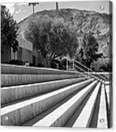 Sandpiper Stairs Bw Palm Desert Acrylic Print by William Dey