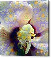 Satin Flower Fractal Kaleidoscope Acrylic Print by Renee Trenholm