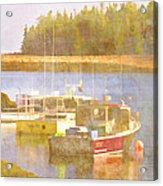 Schoodic Peninsula Maine Acrylic Print by Carol Leigh
