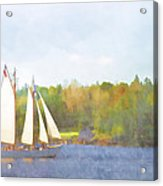 Schooner Castine Harbor Maine Acrylic Print by Carol Leigh