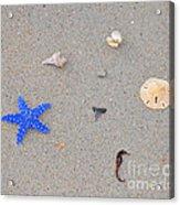 Sea Swag - Dark Blue Acrylic Print by Al Powell Photography USA