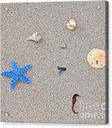 Sea Swag - Light Blue Acrylic Print by Al Powell Photography USA