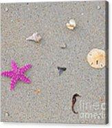 Sea Swag - Pink Acrylic Print by Al Powell Photography USA