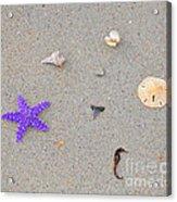 Sea Swag - Purple Acrylic Print by Al Powell Photography USA