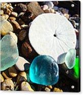 Seaglass Art Prints Rock Garden Sand Dollar Acrylic Print by Baslee Troutman