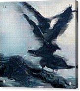 Seagull Grace Acrylic Print by Betty LaRue