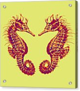Seahorses In Love Acrylic Print by Jane Schnetlage