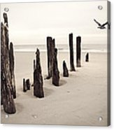 Seaside Acrylic Print by Gary Heller