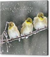 Season's Greetings Acrylic Print by Lori Deiter