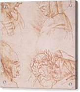 Seven Studies Of Grotesque Faces Acrylic Print by Leonardo da Vinci