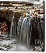 Shale Creek In Autumn Acrylic Print by Darleen Stry