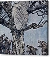 She Looked With Angry Woe At The Straining And Snarling Horde Below Illustration From Irish Fairy  Acrylic Print by Arthur Rackham