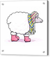 Sheep In A Scarf Acrylic Print by Christy Beckwith