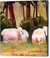 Sheep In The Meadow Acrylic Print by Blenda Studio