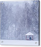 Shelter In The Storm - Featured 3 Acrylic Print by Alexander Senin