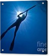 Silhouette Of A Young Woman Spearfishing Acrylic Print by Cade Butler