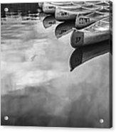 Silver Fish IIi Acrylic Print by Jon Glaser