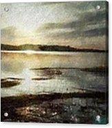Silver Morning Acrylic Print by Gun Legler
