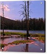 Simple Beauty Of Yellowstone Acrylic Print by John Malone