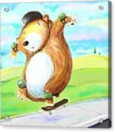 Skateboarding Bear Acrylic Print by Scott Nelson
