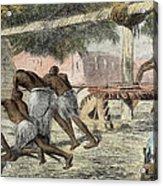 Slaves Irrigating By Water-wheel Acrylic Print by English School