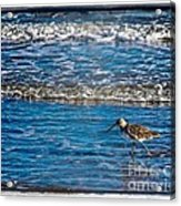 Small Waves Acrylic Print by Perry Webster