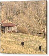 Smoky Mountain Barn 8 Acrylic Print by Douglas Barnett