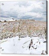 Smuggler's Beach Snow Cape Cod Acrylic Print by Michelle Wiarda