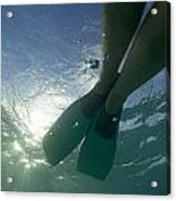 Snorkeller Legs With Flippers Underwater Acrylic Print by Sami Sarkis