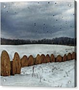 Snow Covered Hay Bales Acrylic Print by Kathy Jennings