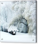 Snow Dream Acrylic Print by Julie Palencia
