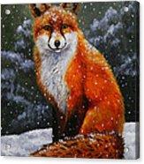 Snow Fox Acrylic Print by Crista Forest