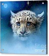 Snow Leopard Cub Acrylic Print by Robert Foster