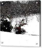 Snow Scene 6 Acrylic Print by Patrick J Murphy
