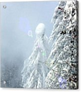 Snowy Trees Acrylic Print by Kae Cheatham