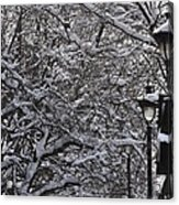 Snowy Way Acrylic Print by Frederico Borges