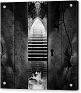 Soft Asylum Acrylic Print by Bob Orsillo