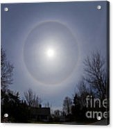 Solar Halo Acrylic Print by Chris Cook
