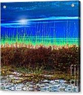 Solar Sky Acrylic Print by Laurel D Rund