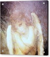 Sometimes The Angels Shiver Acrylic Print by Gun Legler