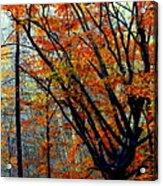 Song Of Autumn Acrylic Print by Karen Wiles