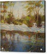 Southern Landscapes   Acrylic Print by Nancy Stutes