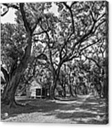 Southern Lane Monochrome Acrylic Print by Steve Harrington