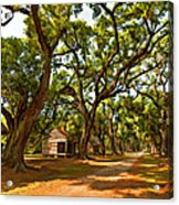 Southern Lane Paint Filter Acrylic Print by Steve Harrington