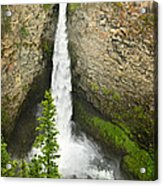 Spahats Falls Waterfall In Wells Gray Provincial Park Acrylic Print by Elena Elisseeva